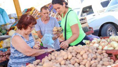 Photo of Diez productos bajaron de precios en la Feria de Capital