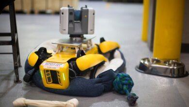 Photo of Dos perros robot de Boston Dynamics empezarán a trabajar en Ford
