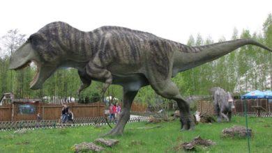 Photo of El buscador de Google y sus increíbles modelos AR de «Jurassic World»