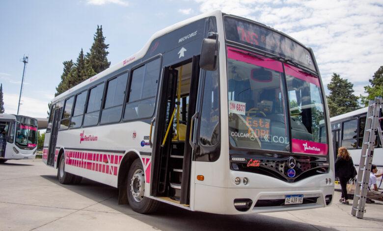 Photo of Presentaron el diseño que tendrán las unidades de la RedTulum