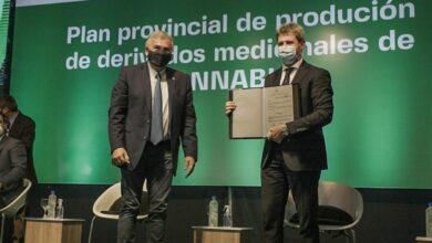Photo of Cannabis medicinal: Uñac firmó con Israel un convenio para capacitar al personal de salud
