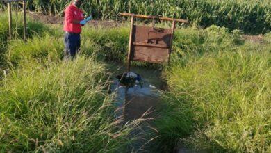 Photo of Menor de un año y seis meses muere ahogada en un canal