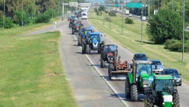 Photo of El gobierno reabrió parcialmente las exportaciones de maíz tras el inicio del paro